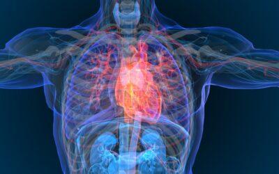 Amiloidosis cardíaca por transtiretina: la gran desconocida