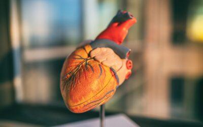 En 30 años se ha duplicado el número de muertes por enfermedad cardiovascular